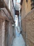 durch die Favelas führen meist nur kleinste Gässchen